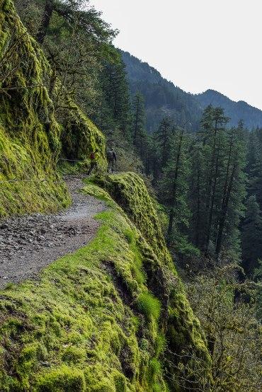 Punchbowl Falls Hike