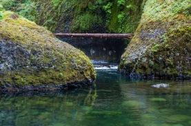 Eagle Creek Trail 440 Side Trail