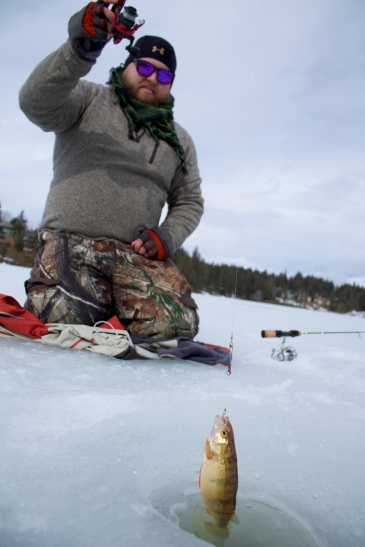 Avondale lake ice fishing
