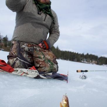 Avondale lake ice fishing
