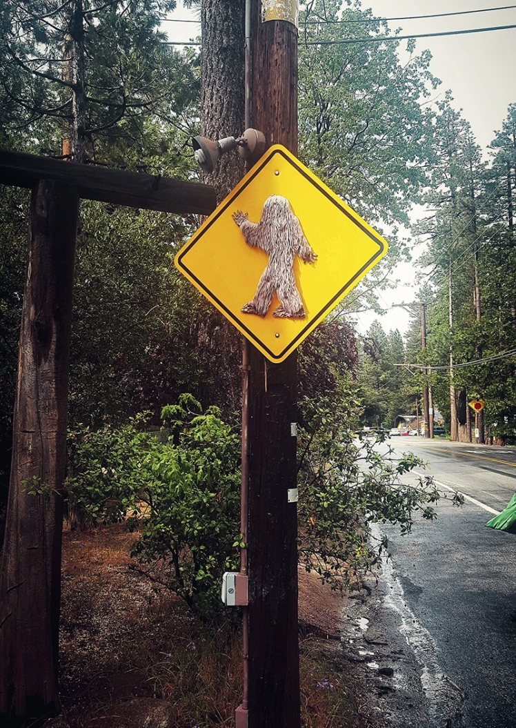 bigfoot-crossing-in-idyllwild2.jpg