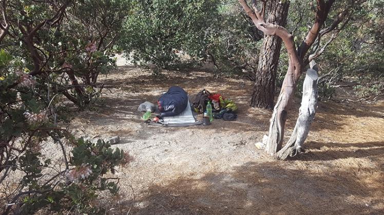 Cowboy Camping-Idylwild