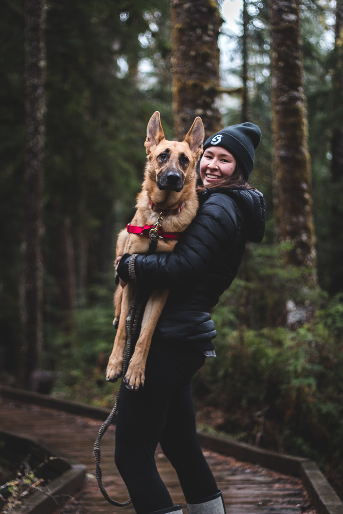 hiking with a german shepherd